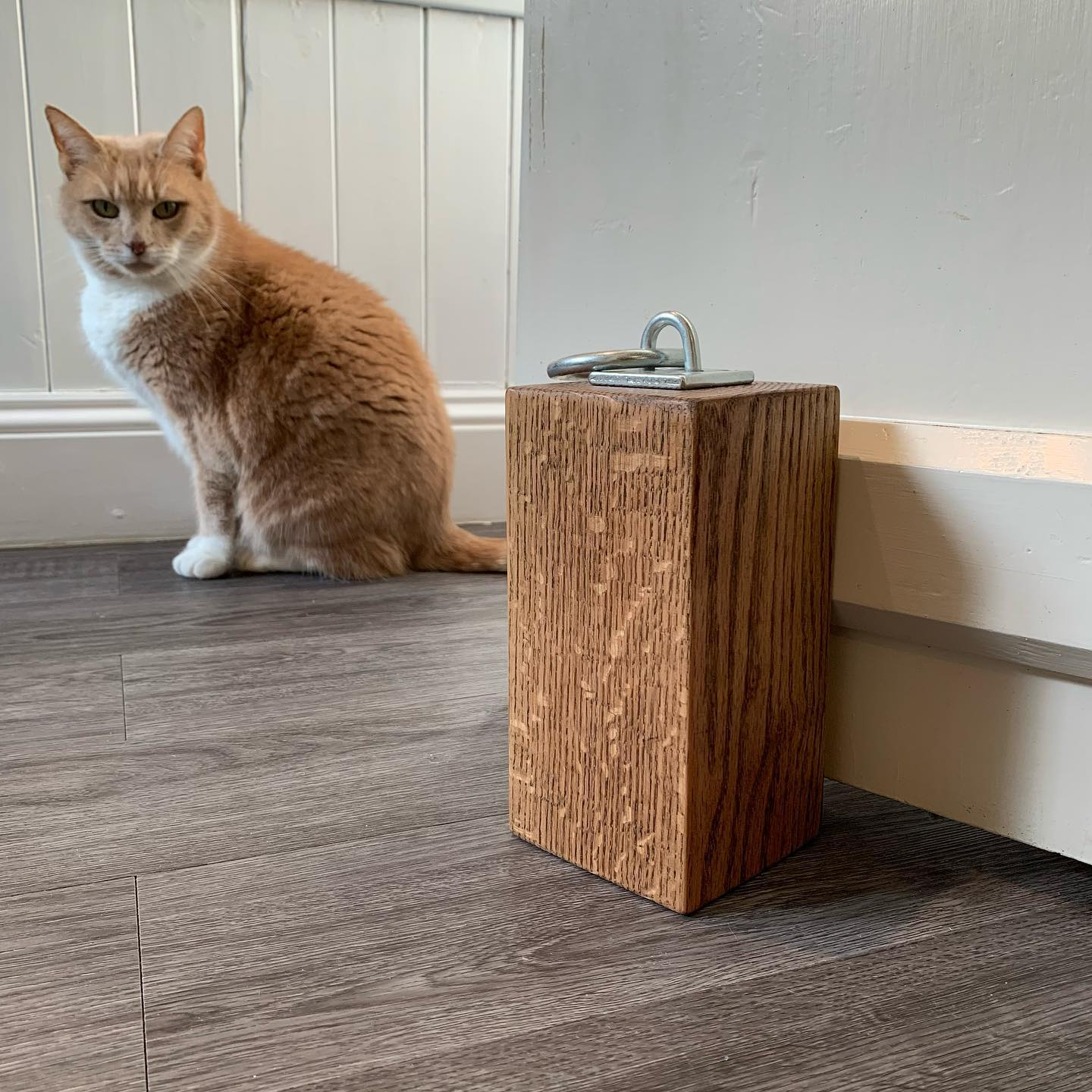 Cat Photo Bomb! Georgie always the little helper! Taking shots to restock the doorstops online... it's taking a little longer than usual.......#Online #shop #photobomb #doorstop #oak #character #personality #ginger #gingercat #workingfromhome #handcrafted #homedecor