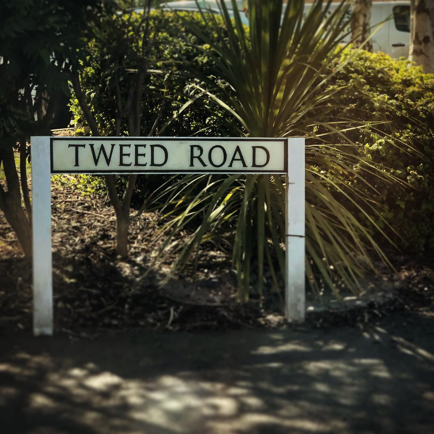 What a great road name #gingerandtweed