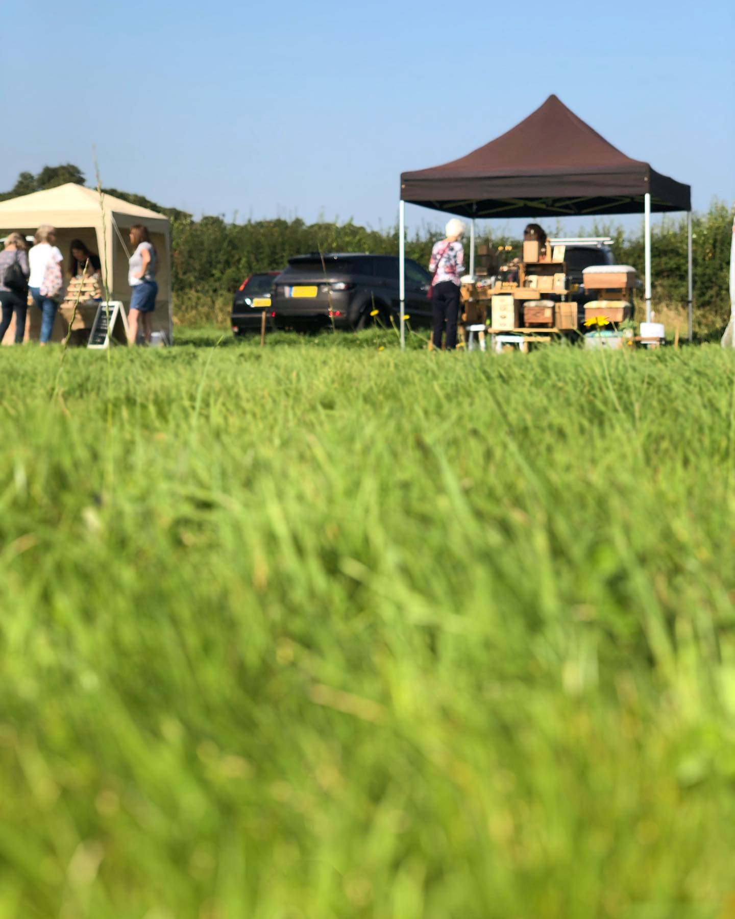 Lovely spot today! Here at the North Somerset Showground until 3pm!