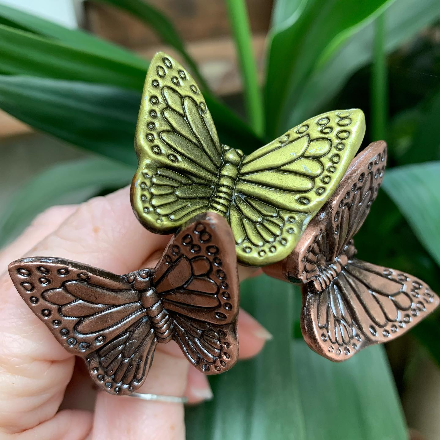 New arrivals!Can't wait to use these on some of our door wedges! ..#newproduct #nature #copper #butterfly #decorative #homewares #gingerandtweed